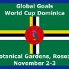 ggwcup2018_300-new